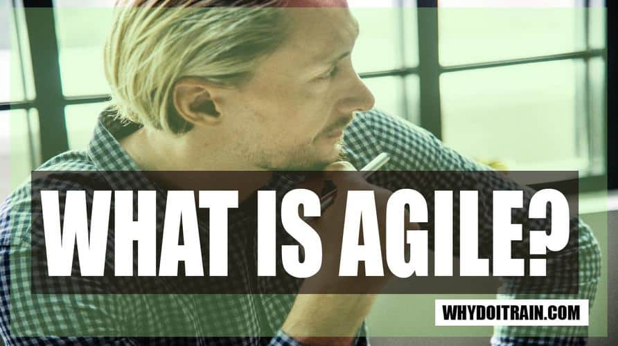 What is Agile Management