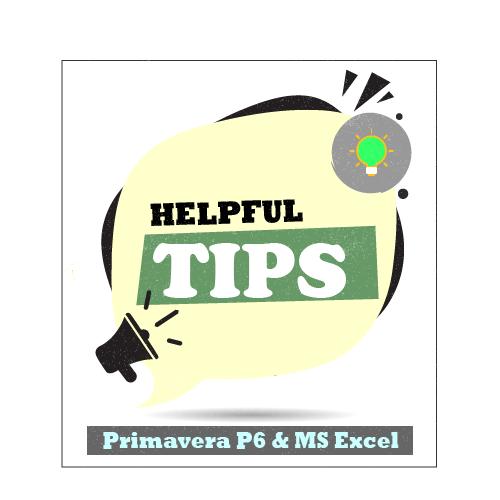 Primavera P6 & Microsoft Excel Helpful tips & tricks