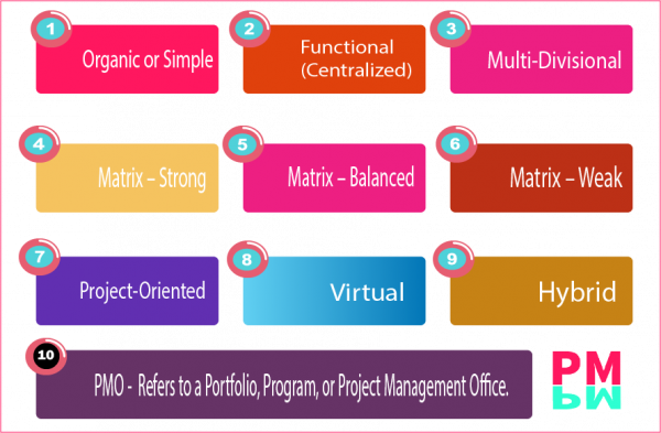 PMBOK 6 Functional Organizations Structure. 10 structures as per PMI